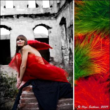 Photography By Olga Sutkina (30 pics) 5049049_Forum.anhmjn.com-20101125201612004