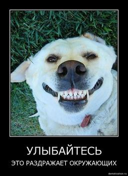 Can't Stop Laughing - Part 17 (97 pics) 5058423_Forum.anhmjn.com-20101126140947093